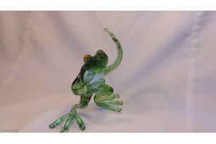 Glass dancing toad